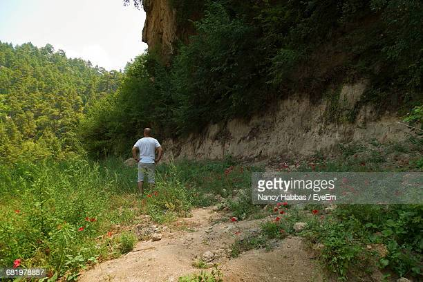 rear view of man standing on field by mountain - nancy green stock pictures, royalty-free photos & images