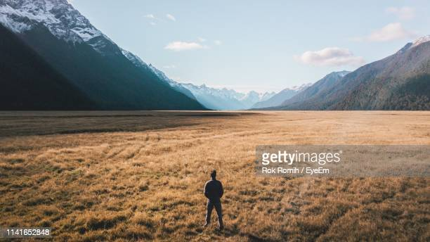 rear view of man standing on landscape - perfection stock pictures, royalty-free photos & images