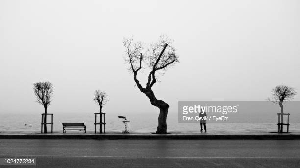 rear view of man standing on promenade against clear sky - one man only stock pictures, royalty-free photos & images