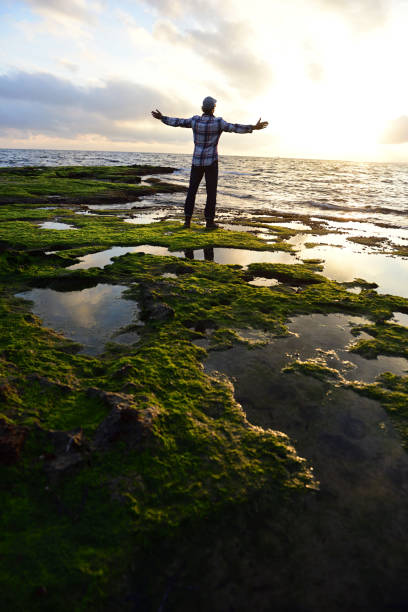 Rear view of man standing on rocky beach with green moss at sunset
