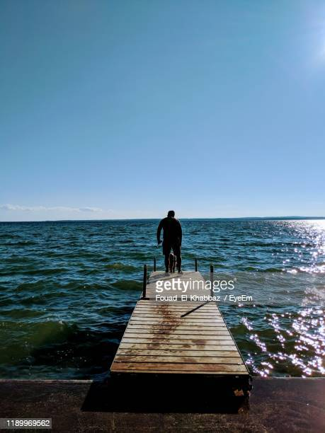 rear view of man standing with dog on pier over sea - fouad el khabbaz ストックフォトと画像