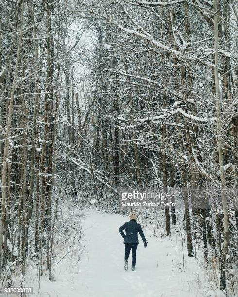 Rear View Of Man Walking Amidst Bare Trees On Snow Covered Landscape