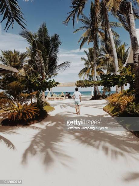 rear view of man walking at beach - cebu stock photos and pictures