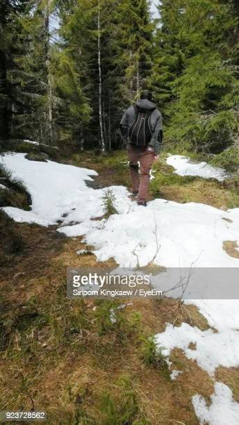 Rear View Of Man Walking In Forest During Winter