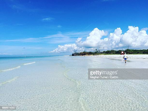 rear view of man walking on beach against blue sky - st. petersburg florida stock photos and pictures