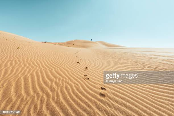 rear view of man walking on desert against sky - gobi desert stock pictures, royalty-free photos & images