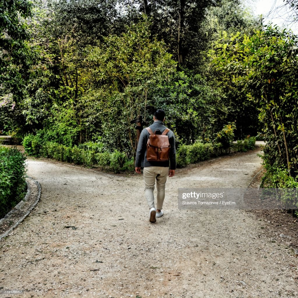 Rear View Of Man Walking On Road Amidst Trees : Photo