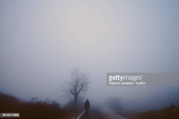 rear view of man walking on road in foggy weather - fabrizio zampetti foto e immagini stock