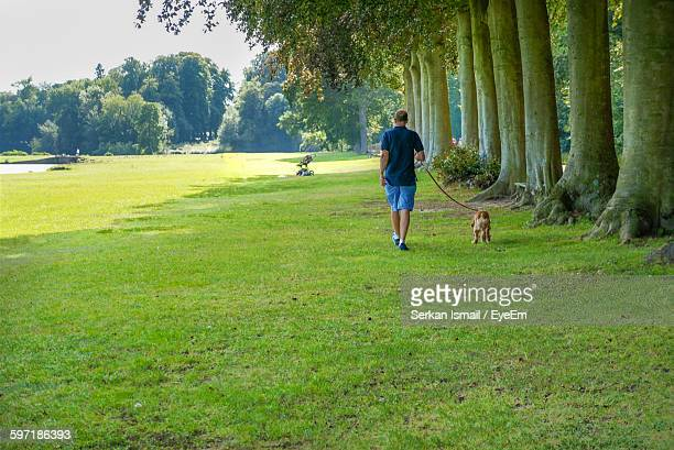 Rear View Of Man Walking With Dog By Trees On Grass In Park