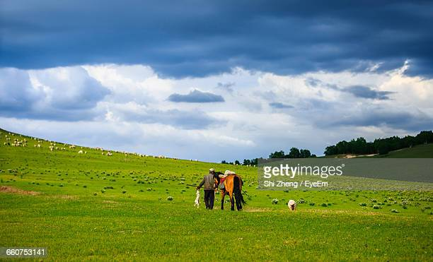 Rear View Of Man Walking With Horse On Grassy Field