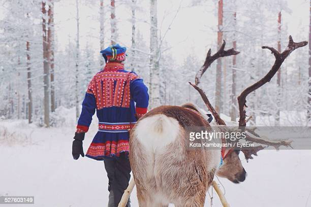 Rear View Of Man Walking With Reindeer In Snow Forest