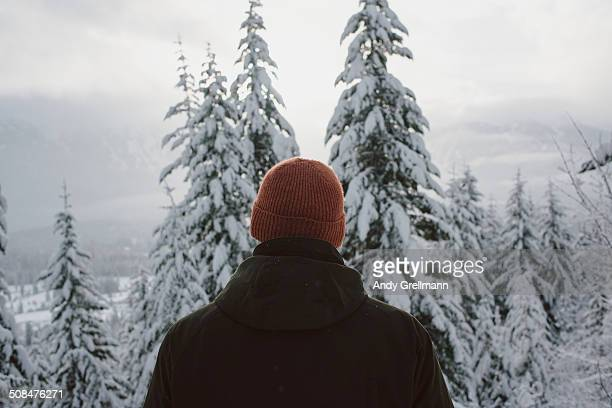 Rear view of man watching snowcapped trees at Alpine Meadows