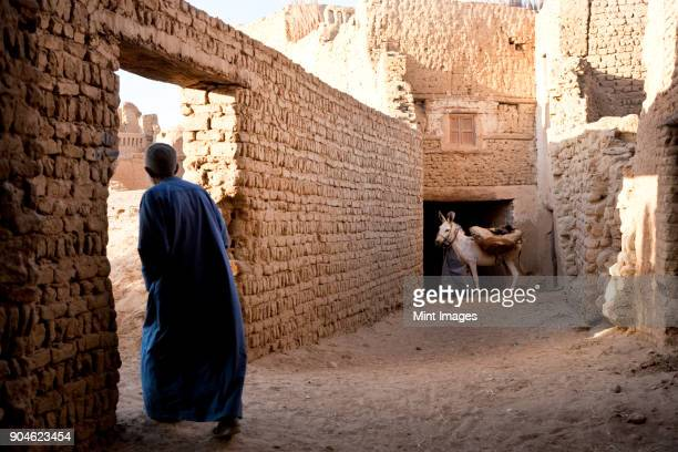 Rear view of man wearing caftan walking through wall doorway, donkey in background.