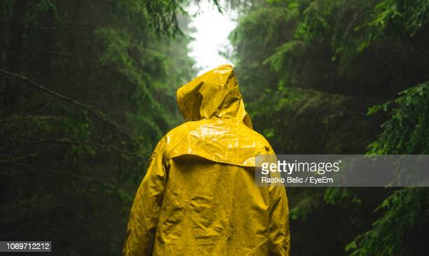 rear view of man wearing yellow raincoat in forest during rain - raincoat stock pictures, royalty-free photos & images