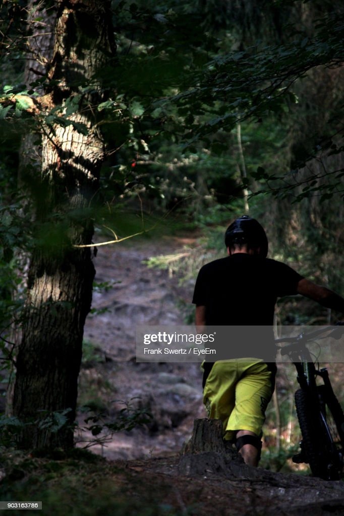 Rear View Of Man With Bicycle At Forest : Stock-Foto