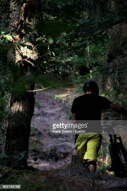 rear view of man with bicycle at forest - frank swertz stockfoto's en -beelden