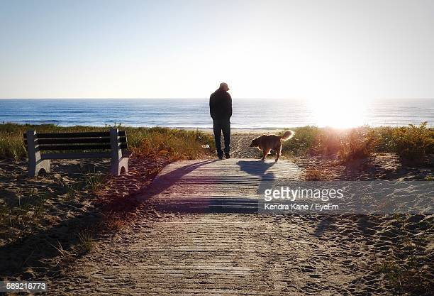 rear view of man with dog at beach against sky - maryland staat stockfoto's en -beelden