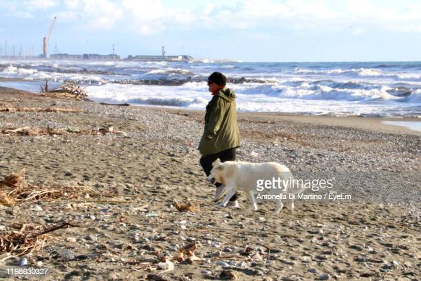 rear view of man with dog on beach against sky - antonella di martino foto e immagini stock