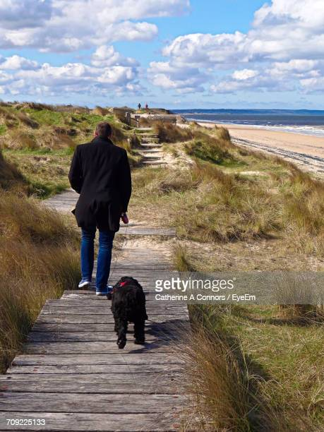 rear view of man with dog walking on walkway amidst grass at beach against sky - utah beach stock photos and pictures