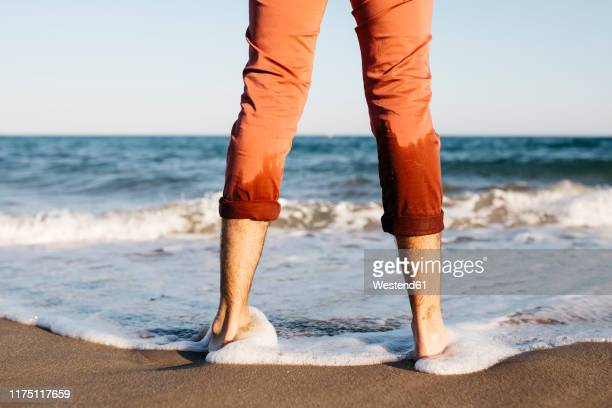 rear view of man with orange trousers standing on a beach at water's edge - rolled up pants stock pictures, royalty-free photos & images