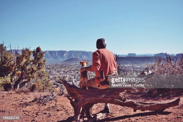rear view of man with puppy sitting on damaged wood against mountain during sunny day - vertebrato foto e immagini stock