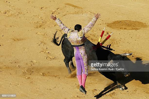 Rear View Of Matador With Black Bull On Field