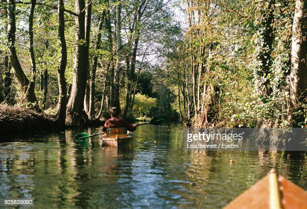rear view of men kayaking in river at forest - spreewald stock pictures, royalty-free photos & images