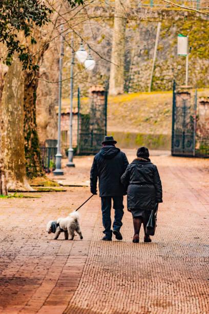 Rear View Of Men Walking With Dog