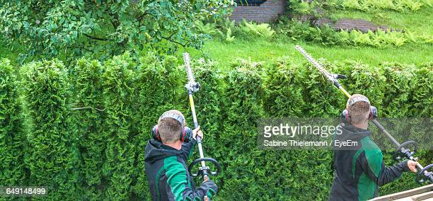 Rear View Of Men With Hedge Clippers In Garden