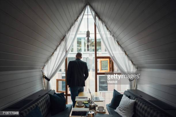 Rear view of mid adult businessman looking through office window