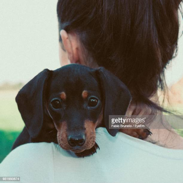 Rear View Of Mid Adult Woman Carrying Puppy
