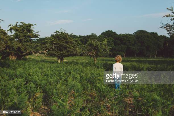 rear view of mid adult woman standing amidst plants on field - bortes stockfoto's en -beelden
