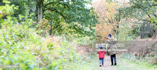 rear view of mother and son holding hands in forest - back stock pictures, royalty-free photos & images