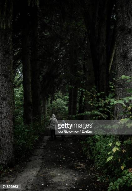rear view of mother and son walking on footpath at forest - igor golovniov stock pictures, royalty-free photos & images
