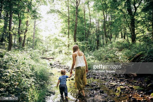 rear view of mother and son walking through stream in forest - stream stock pictures, royalty-free photos & images