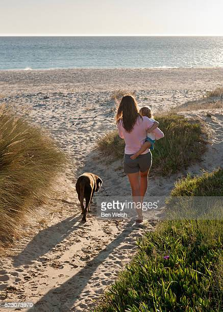 Rear view of mother with son (3-4) and dog on beach