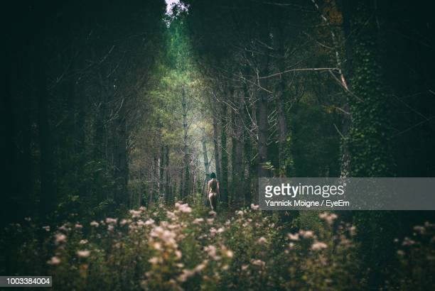 rear view of naked young woman standing in forest - beautiful bare bottoms stock pictures, royalty-free photos & images