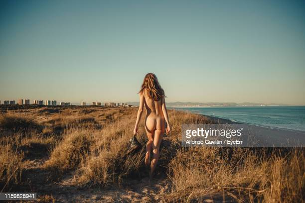 rear view of naked young woman walking at beach against clear sky during sunset - beautiful bare bottoms stock pictures, royalty-free photos & images