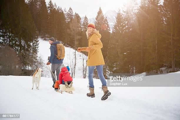 Rear view of parents pulling sons on toboggan in snow covered landscape, Elmau, Bavaria, Germany