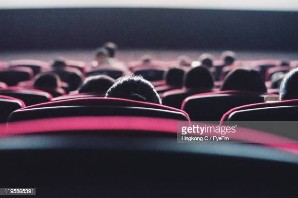 rear view of people at theater - industrie du cinéma photos et images de collection