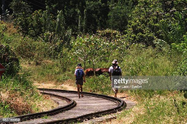 Rear View Of People Hiking On Railroad Tracks Through Forest With Horses