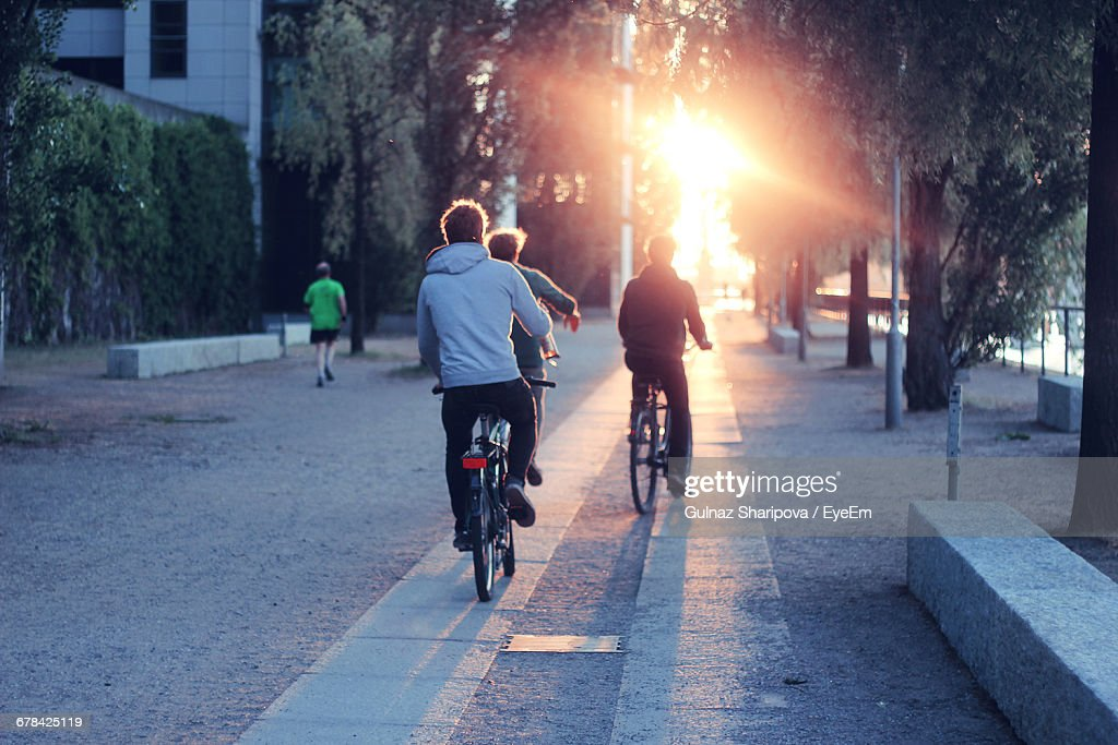 Rear View Of People Riding Bicycles : Stock Photo