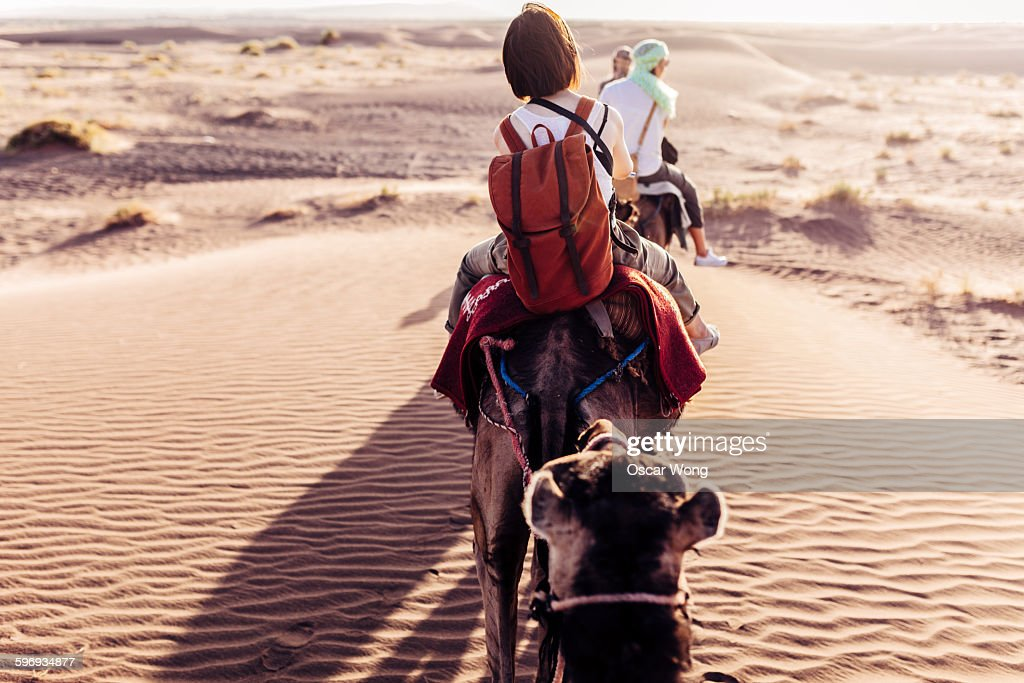 Rear view of people riding camels in desert : Foto de stock