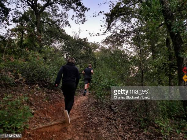 rear view of people running amidst plants in forest - chasing stock pictures, royalty-free photos & images