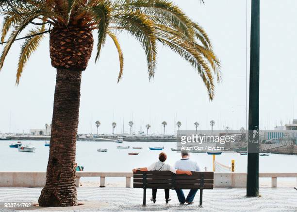 rear view of people sitting by palm tree at riverbank against sky - cascais stock photos and pictures