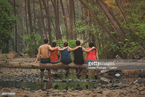 Rear View Of People Sitting On Branch At Landscape