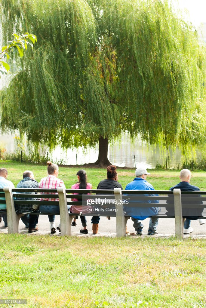 Rear view of people sitting together on a bench in Central Park : Stock Photo