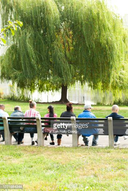 rear view of people sitting together on a bench in central park - lyn holly coorg stock-fotos und bilder