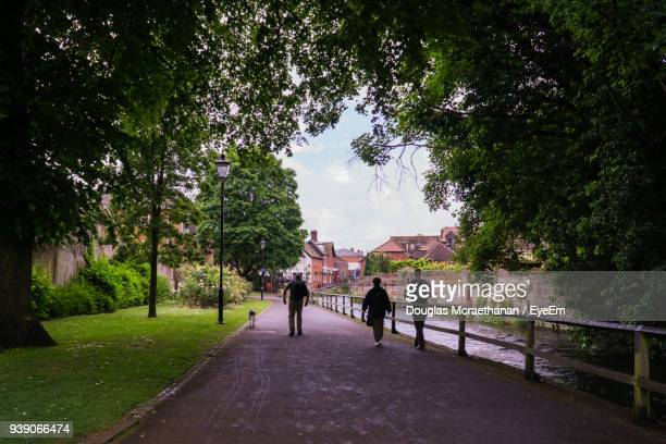 rear view of people walking on footbridge amidst trees - winchester hampshire stock photos and pictures