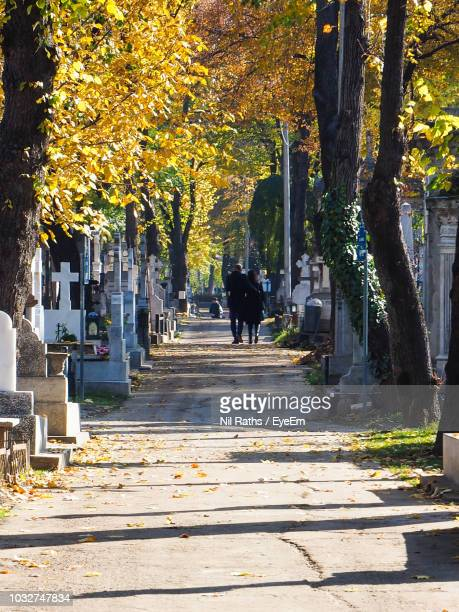 Rear View Of People Walking On Footpath At Cemetery During Autumn